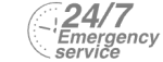 24/7 Emergency Service Pest Control in Nine Elms, SW8. Call Now! 020 8166 9746