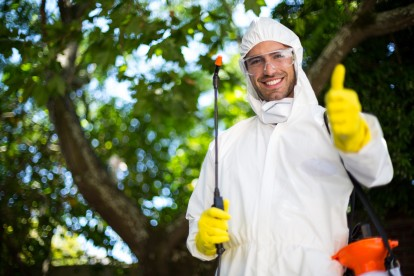 Pest Control in Nine Elms, SW8. Call Now 020 8166 9746