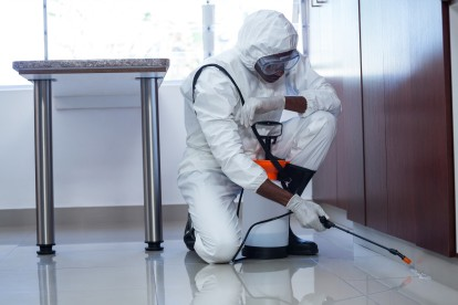 Emergency Pest Control, Pest Control in Nine Elms, SW8. Call Now 020 8166 9746